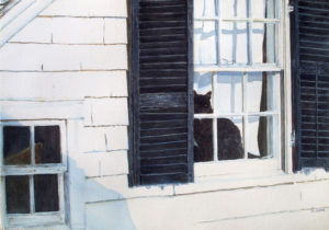 Provincetown Window ~ A Watchful Eye